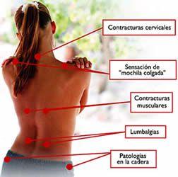 Que debe ser el masaje sheynogo del departamento de la columna vertebral
