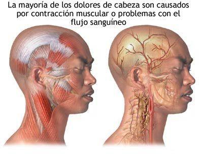 Cuando es necesario quitar la hernia sheynogo del departamento de la columna vertebral